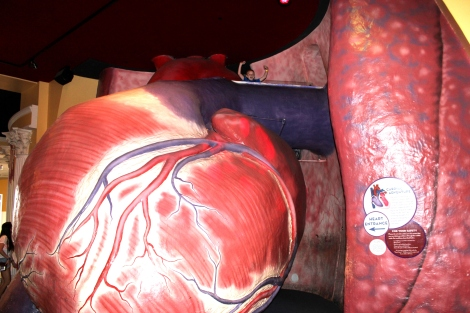 Inside the giant heart
